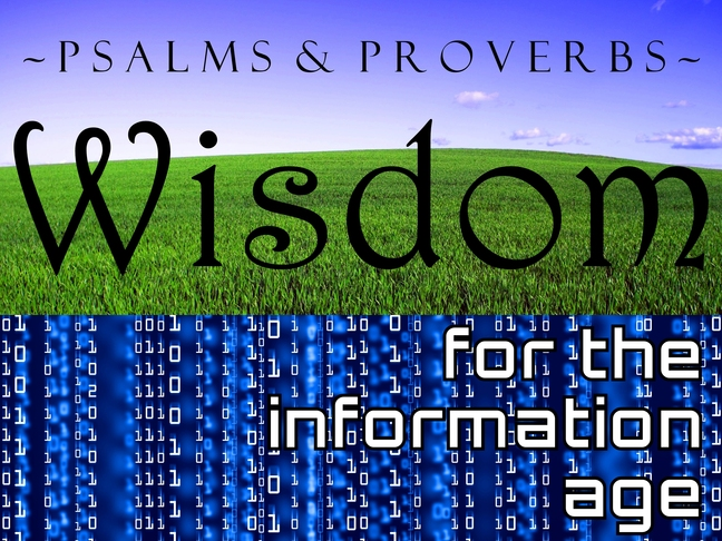wisdom for the information age 1